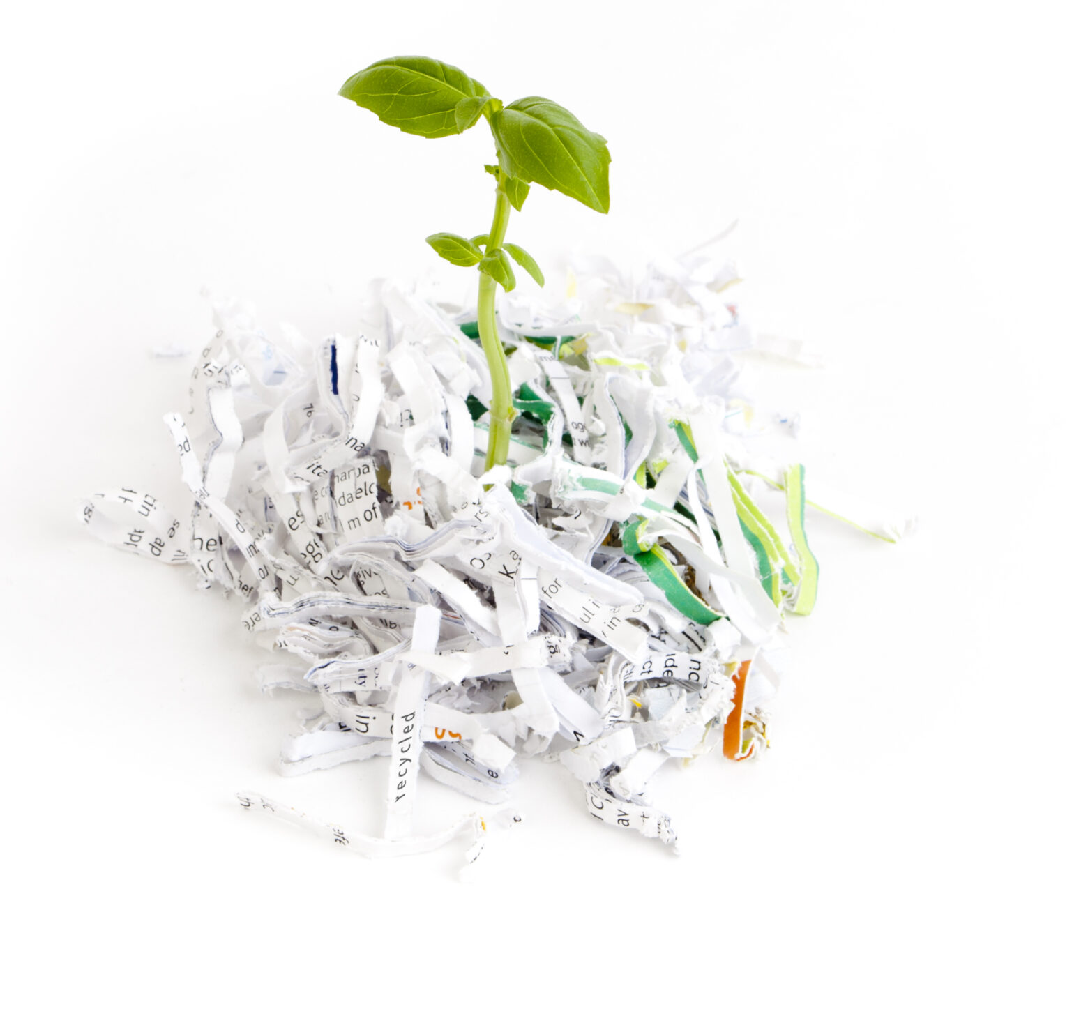 A Brief History of Paper Shredding